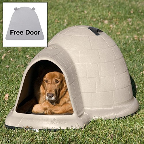 best dog house for medium sized dogs